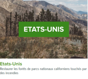Etats Unis-ecolo-arbres-happy-positive-news