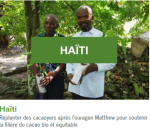 Haiti-ecolo-arbres-happy-positive-news