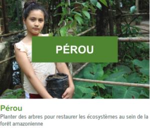 Perou-ecolo-arbres-happy-positive-news