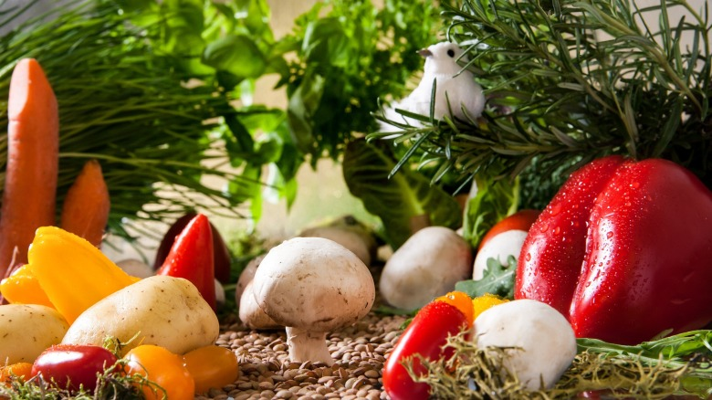 vegetarien3-sport-nutrition-head-happy-positive-news